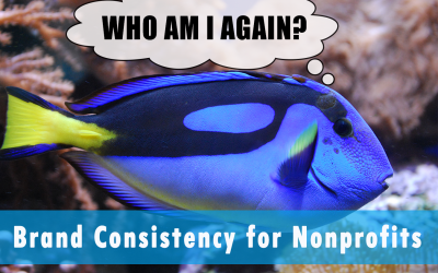 Who are you? Brand Consistency for Nonprofits