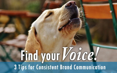 Find Your Voice! 3 Tips for Consistent Brand Communication